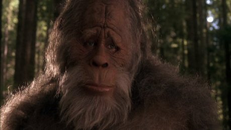 1fed64d4-d0ca-4822-a44d-fbc67b9364a3_HarryHendersonsBigfoot